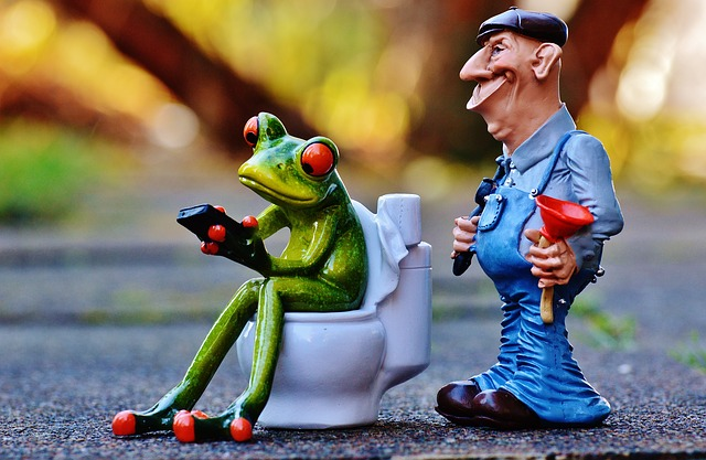 plumber-1160815_640